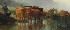 Highland cattle painting by T H Gibb