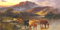 Highland cattle painting by Charles W Oswald
